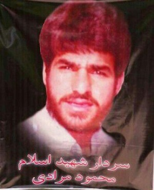 The Biography of Martyr Mahmoud Moradi